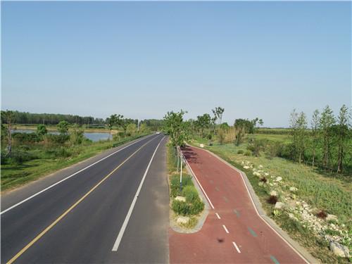 园冶杯专业奖:巢湖市烔长路景观工程