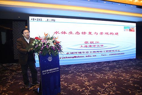 张饮江教授:水质生态修复景观构建